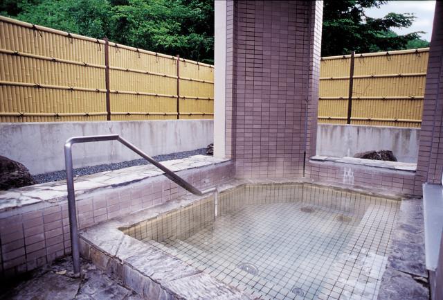 湯の元温泉旅館(日帰り温泉)