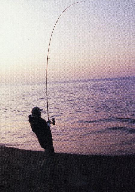 【2020年中止】第49回根室半島磯釣全道大会