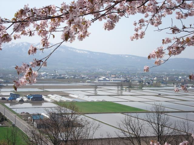 丸山公園展望台