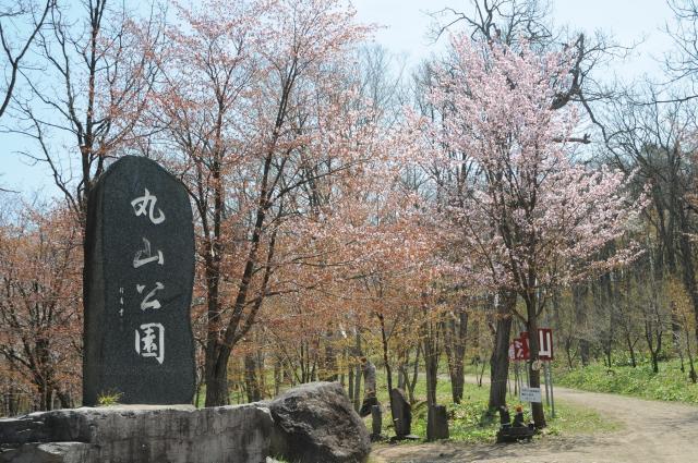 丸山公園(北海道深川市)