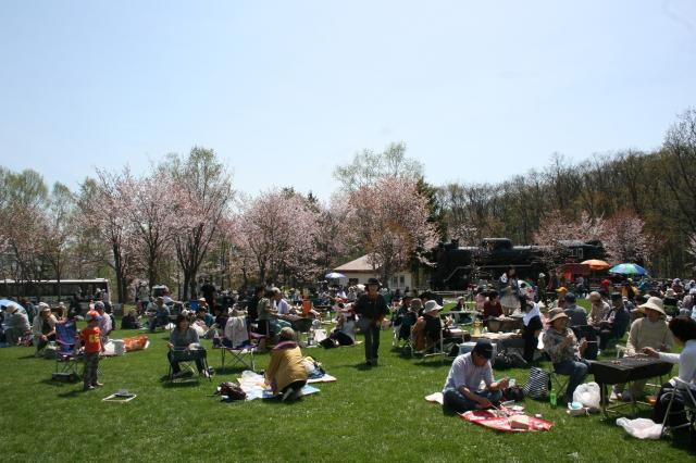 【2021年中止】市民桜まつり