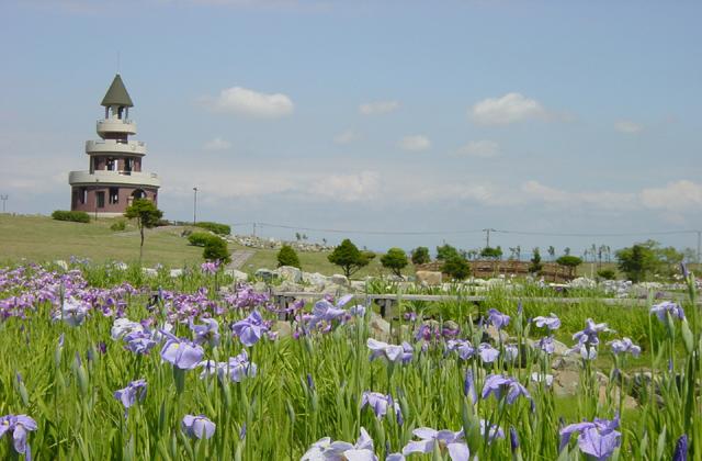 Image result for Shinotsu Park