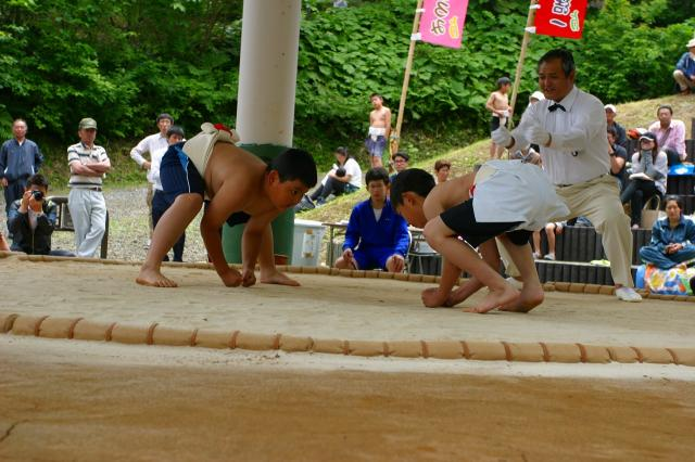 わんぱく相撲函館場所福島大会