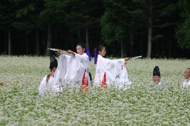 千軒そばの花観賞会での松前神楽