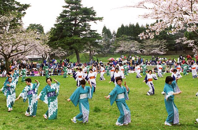 北斗陣屋桜まつり