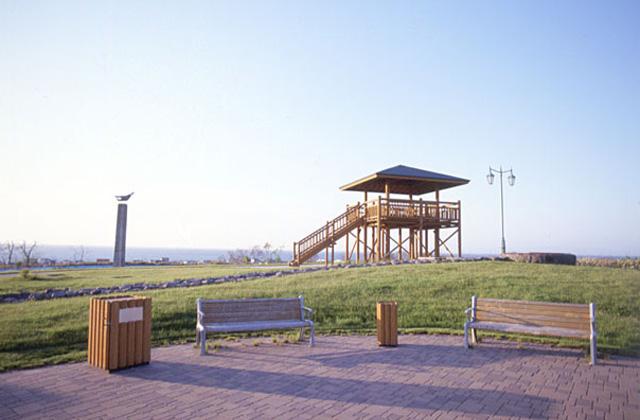 ハマナス台場公園