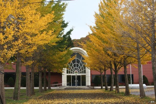 熊石歴史記念館