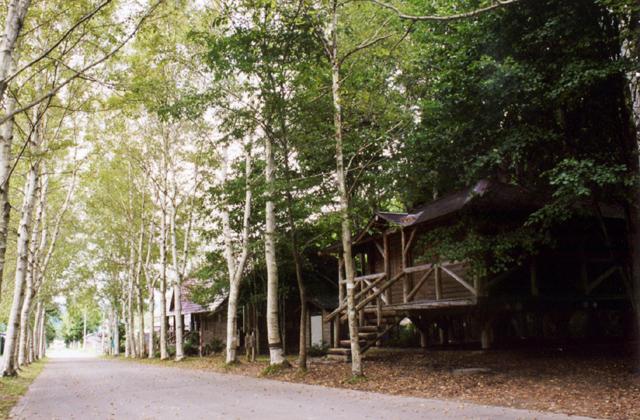 レクの森 キャンプ場