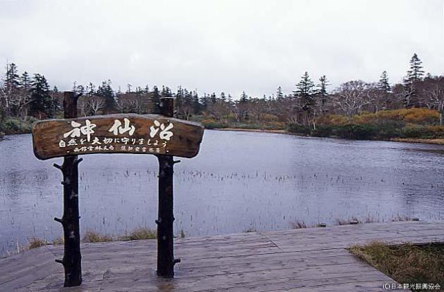 ニセコ山系の沼