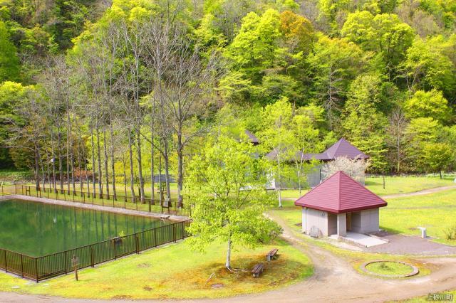 水源公園5