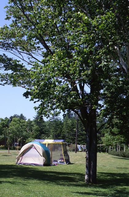 富士見ケ丘公園キャンプ場