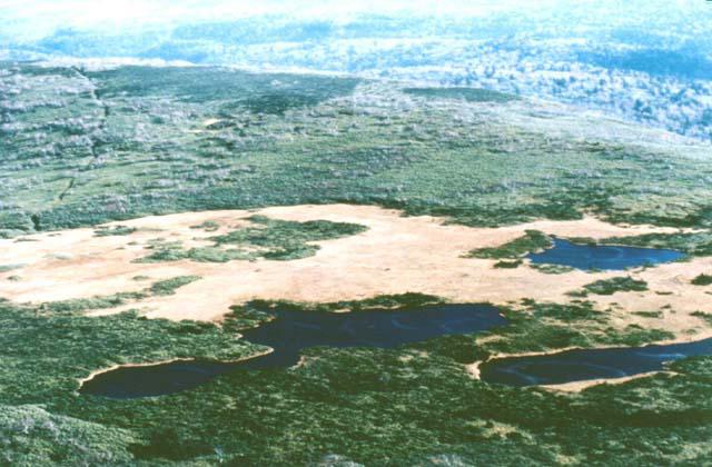 ピヤシリ高層湿原地帯