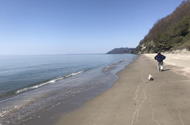 豊浦 砂浜ウォーキング