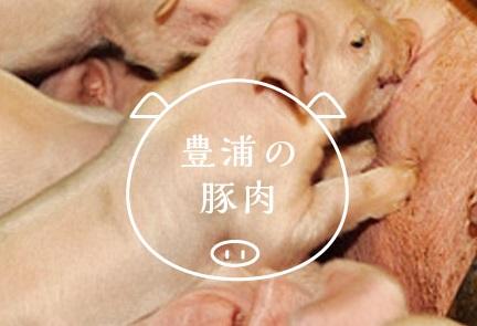 豊浦産SPF豚