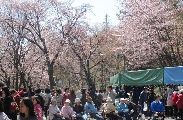新得神社山桜まつり