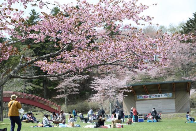 第71回あっけし桜・牡蠣まつり【中止】