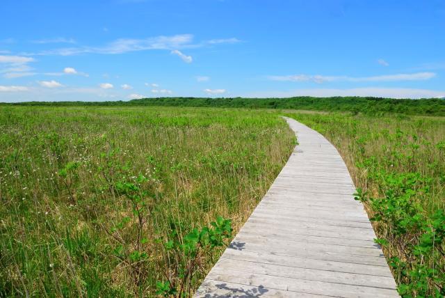 標津町ポー川史跡自然公園