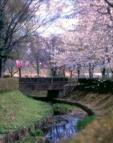 東公園(青森県黒石市)