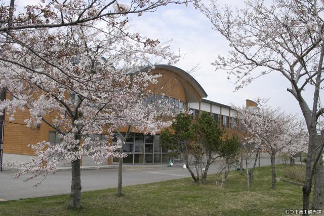 かわうち桜まつり