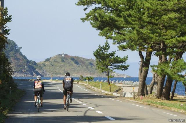 夏泊半島一周サイクリング