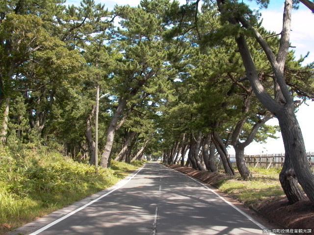 Matsumae Highway