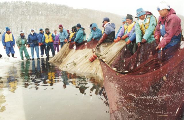 小川原湖氷下曳網漁