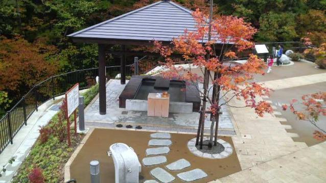 Waterside park bush warbler Yunosato park