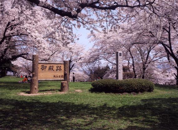城山桜ウィーク