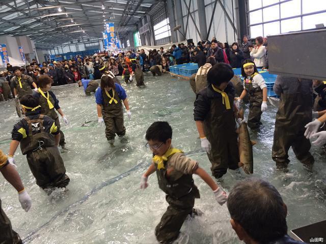 山田の鮭まつり
