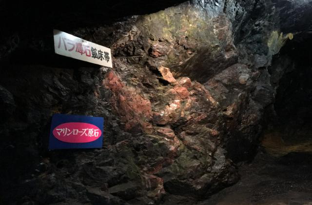 マリンローズパーク野田玉川地下博物館