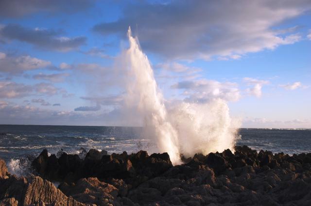 岩井崎の潮吹岩