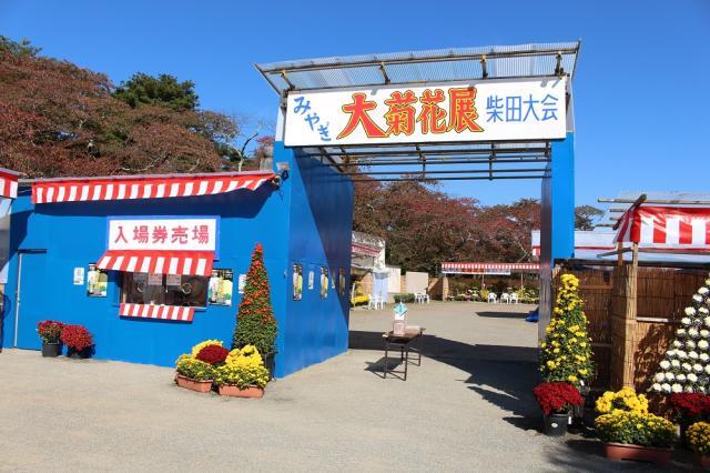 みやぎ大菊花展柴田大会