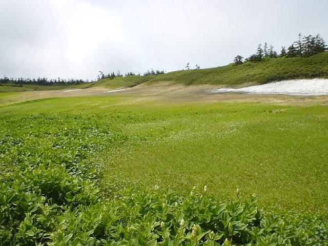 黒谷地~源太森~八幡平山頂コース