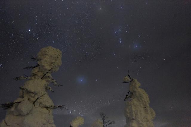 夜の樹氷鑑賞会