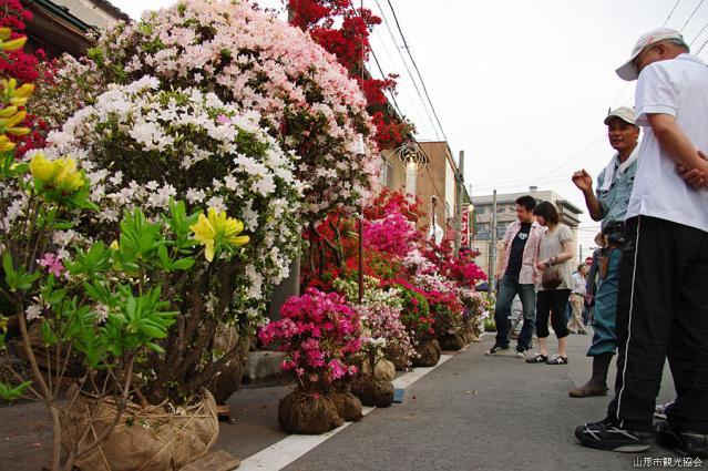 Yakushi Festival, Plant Fair★06201ba2212056181