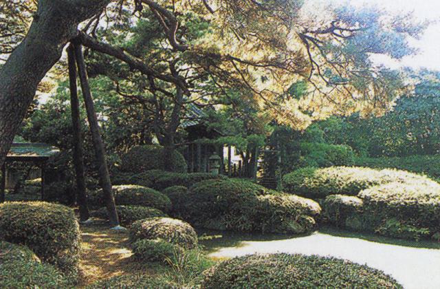 Sugaya garden★06203ah2140145472