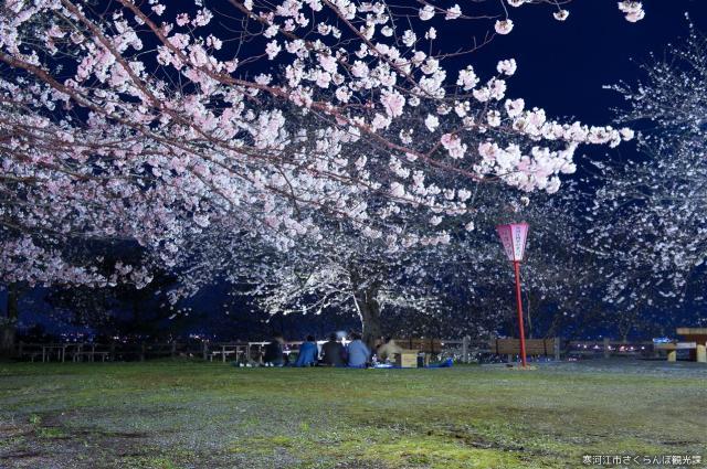 【2021年イベント開催なし】寒河江桜まつり