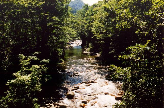 根子川渓谷