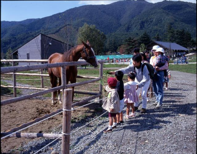 Ranch Festival
