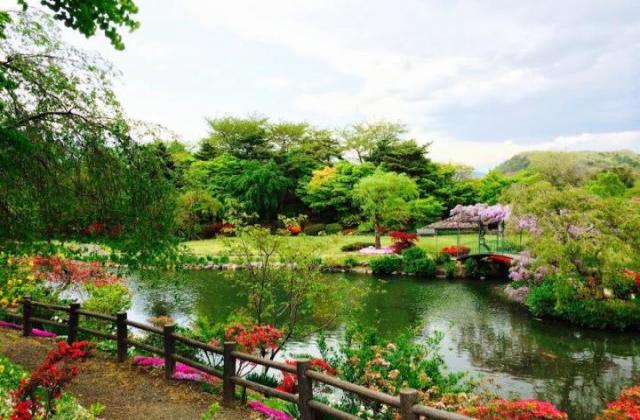 四季の里 緑水苑