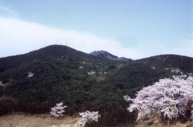 宇津峰山開き