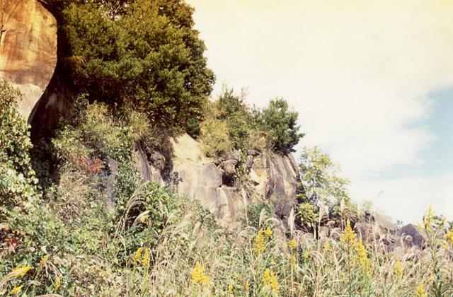 陣ヶ岡遺跡