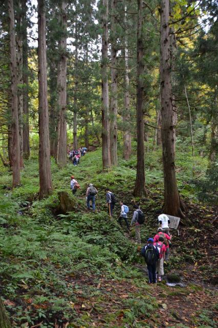 大山祇神社ハイキングコース