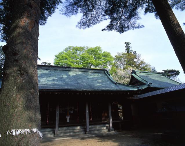 Kohiragata Tenman-gu Shrine Annual Festival★07408ba2210115110