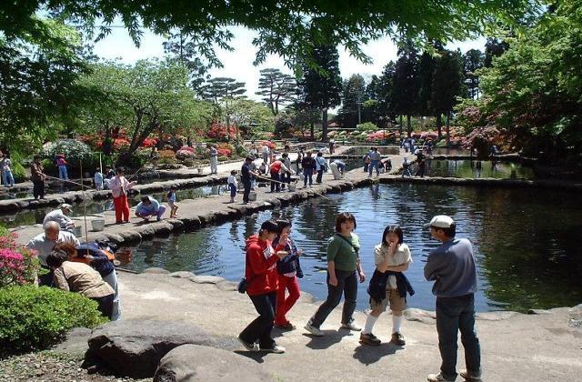 林養魚場ますつり公園