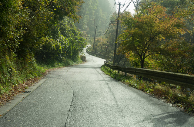 サイクリングロード三角形の道