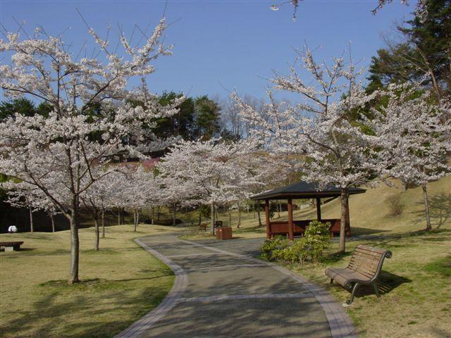 福島空港公園
