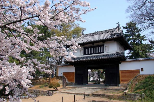 土浦桜まつり2018