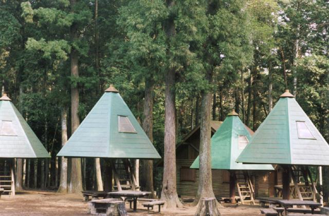 龍ケ崎市森林公園キャンプ場