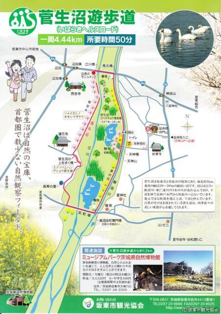 菅生沼遊歩道(いばらきヘルスロード)